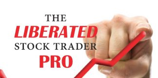 Go PPO - Stock Trading Training