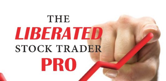 Go PPO - Stock Trading Training