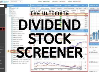Build The Best Dividend Stock Screener